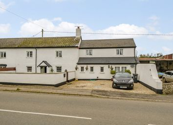 Thumbnail 4 bed cottage for sale in The Cottages, Honiton, Devon