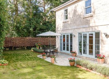 Thumbnail 4 bedroom detached house for sale in Beech Avenue, Bath, Somerset