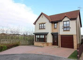 Thumbnail 4 bedroom detached house to rent in Cauldhame Street, Falkirk