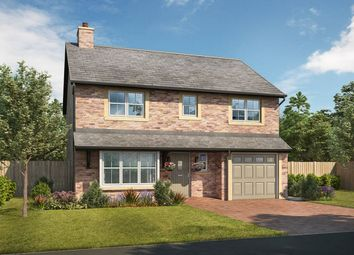 Thumbnail 4 bed detached house for sale in Darlington Road, Middleton St. George, Darlington