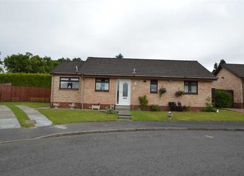 Thumbnail 3 bed bungalow for sale in Broughton Place, Hamilton, Hamilton