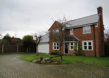 Thumbnail 4 bed detached house for sale in Catchacre, Dunstable
