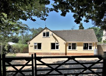Thumbnail 6 bed detached bungalow for sale in Ashley Drive South, Ashley Heath, Ringwood