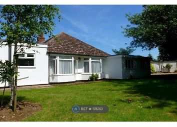 Thumbnail 4 bedroom bungalow to rent in Windrush Road, Kesgrave