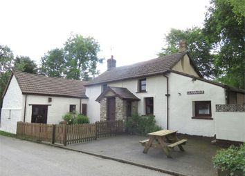 Thumbnail 4 bed cottage for sale in Glannant, Llwynygroes, Tregaron, Ceredigion