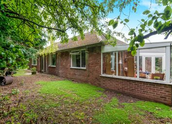 Thumbnail 4 bed detached bungalow for sale in Brecklands, Mundford, Thetford