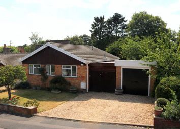 Thumbnail 3 bed detached bungalow for sale in Primrose Ridge, Godalming