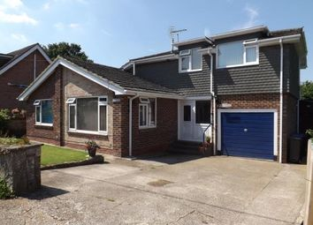 Thumbnail 3 bed detached house for sale in Nomansland, Salisbury, Wiltshire