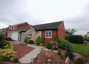 Thumbnail 2 bed detached bungalow for sale in Hedgerow Mews, Ashington