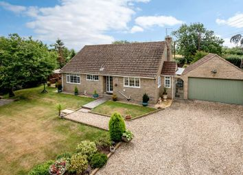 Thumbnail 4 bed bungalow for sale in Podgers Lane, Ilton, Ilminster