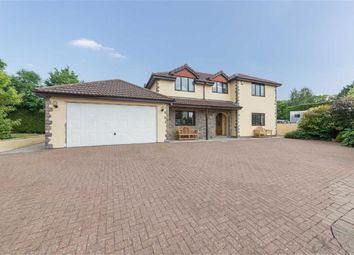 Thumbnail 4 bed detached house for sale in Manor Farm, Crick, Monmouthshire
