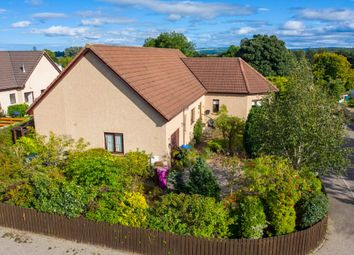 Thumbnail 3 bed detached bungalow for sale in Finlandia, 1 Glebe Park, Dyke