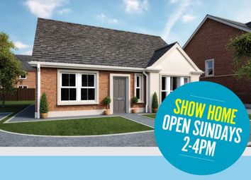 Thumbnail 4 bed bungalow for sale in The Harting, Ballycraigy Road, Newtownabbey