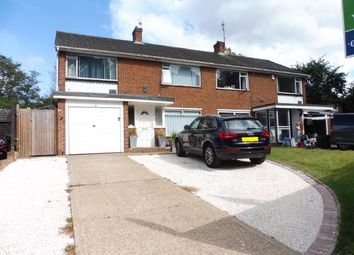 Thumbnail 4 bed property to rent in Willington Street, Maidstone