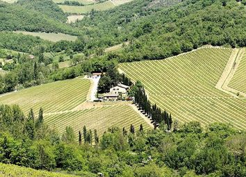 Thumbnail Property for sale in High Level Winery, Gaiole In Chianti, Tuscany, Italy