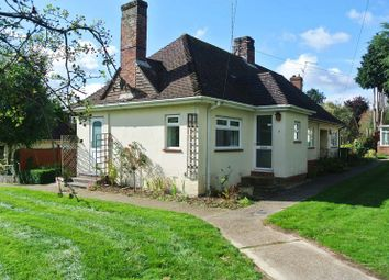 Thumbnail 2 bed bungalow to rent in Grove Close, Basingstoke