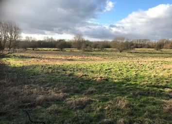 Thumbnail Land for sale in Old Norwich Road, Barham, Ipswich