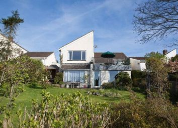 Thumbnail 4 bed detached house for sale in Bridford, Exeter