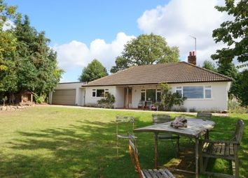 Thumbnail 3 bed detached bungalow to rent in Flatford Lane, East Bergholt, Colchester, Suffolk