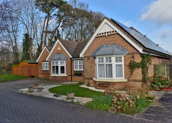 Thumbnail 4 bed bungalow for sale in Paddock Gardens, Lymington