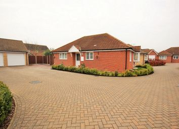 Thumbnail 3 bed detached bungalow for sale in Mulberry Gardens, Langenhoe, Colchester, Essex