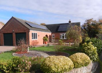 Thumbnail 4 bed detached bungalow for sale in Pencombe, Herefordshire