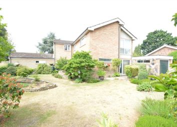 Thumbnail 4 bed detached house for sale in Mead Close, Buxton, Norwich