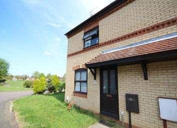 Thumbnail 1 bed semi-detached house to rent in Jasmine Road, Kettering