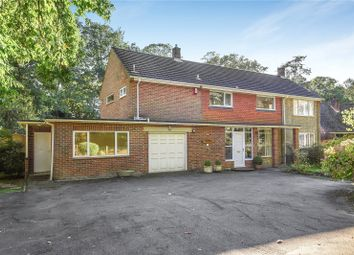 Thumbnail 5 bed detached house to rent in Hocombe Road, Hiltingbury, Hampshire, Hampshire