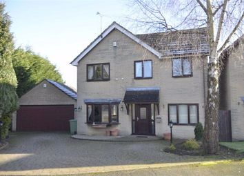 Thumbnail 4 bed detached house for sale in Birch Close, Wessington, Alfreton