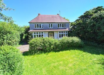 Thumbnail 4 bed detached house for sale in Elm Grove, Barnham, Bognor Regis