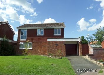 Thumbnail 4 bed detached house to rent in Meadow Gardens, Beccles