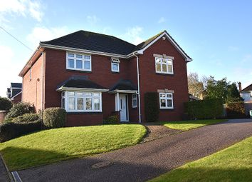 Thumbnail 4 bed detached house for sale in Larch Road, Exeter