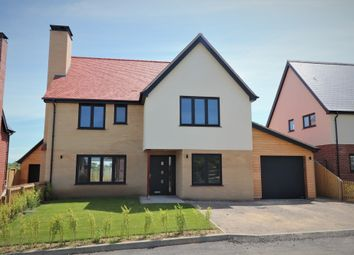 Thumbnail 4 bed detached house for sale in Duke Street, Hintlesham, Ipswich, Suffolk