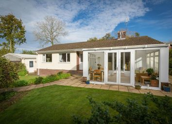 Thumbnail 3 bedroom detached bungalow for sale in Morchard Bishop, Crediton
