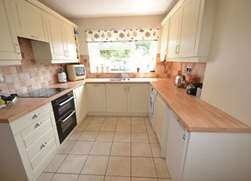 Thumbnail 4 bedroom detached house to rent in Chestnut Hill, Norwich