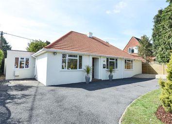Thumbnail 4 bed detached bungalow for sale in Woodlands Avenue, Burghfield Common, Reading