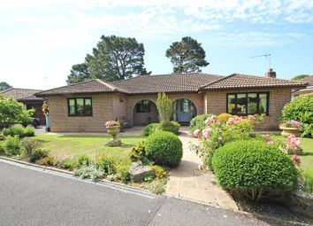 Thumbnail 4 bed detached bungalow for sale in Southern Oaks, Barton On Sea, New Milton
