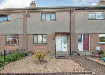 Thumbnail 2 bed terraced house for sale in Strips Of Craigie Road, Dundee, Angus