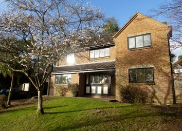 Thumbnail 4 bed detached house to rent in Whitfield Park, Ashley Heath, Ringwood
