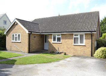 Thumbnail Detached bungalow for sale in Mill Road, Mile End, Colchester