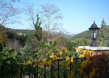 Thumbnail 1 bed apartment for sale in Ceret, Pyrénées-Orientales, France