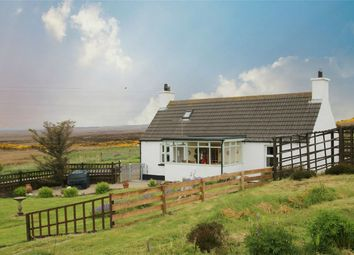 Thumbnail 2 bed detached house for sale in Bluebell Cottage, Freswick, Wick, Highland