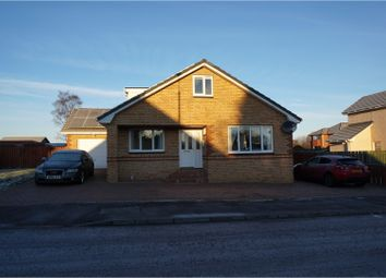 Thumbnail 4 bed detached house to rent in Wallace Wynd, Carluke