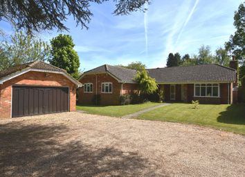 Thumbnail 4 bed bungalow for sale in Upper Hollis, Great Missenden