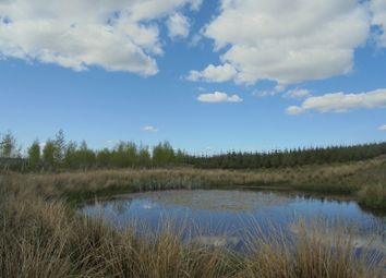 Thumbnail Land for sale in Bailey, Newcastleton, Roxburghshire