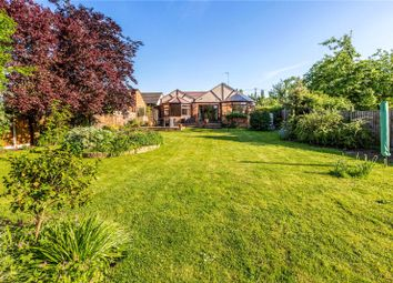 Thumbnail 3 bed detached bungalow for sale in Long Lane, Maidenhead, Berkshire