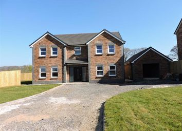 Thumbnail 4 bedroom detached house for sale in Maesglasnant, Cwmffrwd, Carmarthen