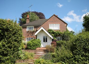 Thumbnail 4 bed detached house to rent in The Seasons, 41 Parsonage Lane, Westcott, Surrey