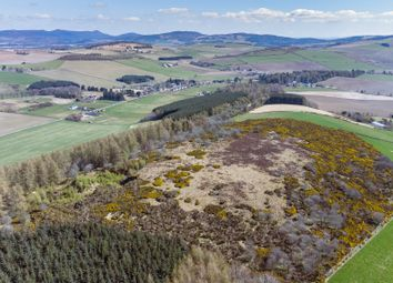 Thumbnail Land for sale in Muir Of Fowlis, Alford